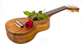 Ukulele and Rose Stock Images