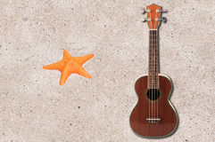 Ukulele and sea star Stock Images