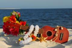 Ukulele sulla spiaggia Fotografia Stock Libera da Diritti