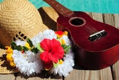 Ukulele und tropischer Hut Lizenzfreie Stockfotos