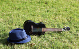 Free Ukulele With Hat On Green Grass Stock Images - 89962674