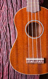 Ukulele on wood background Royalty Free Stock Photos