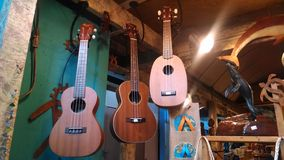 Ukuleles. A shop in Kihei on Maui in Hawaii Stock Image