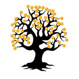 ukuwać nazwę pieniądze drzewa Zdjęcie Stock