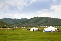 Ulaanbaatar的,蒙古Gorkhi-Terelj国家公园 库存照片