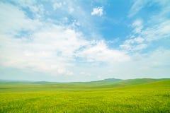 Ulagai干草原地区 免版税库存图片