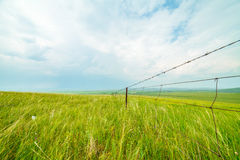 Ulagai steppe with Iron fences Stock Images