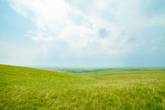 Ulagai Steppe Region Royalty Free Stock Photography