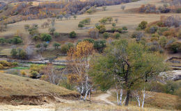 Ulan Buh grassland in autumn Royalty Free Stock Photo