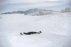 Ulan Buh grasslands in winter Stock Photography