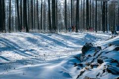 Ulan Buh grasslands in winter Royalty Free Stock Photos