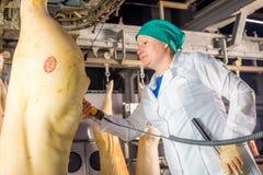 Ulan-Ude Rosja, Marzec, - 1, 2016: Fabryka dla produkci wieprzowiny mięso Obraz Stock