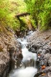 Ulba River Ecuador Royalty Free Stock Photos