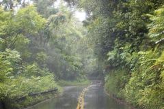 Ulewa deszcz na drodze w Maui Hawaje burzy obraz royalty free