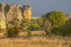 Ulewa przychodzi na żółtej skalistej pustyni w Madagascar Obraz Royalty Free