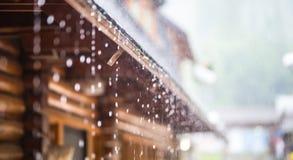 Ulewa w lato deszczu i burzy opuszcza na dachu fotografia stock