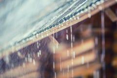 Ulewa w lato deszczu i burzy opuszcza na dachu obraz royalty free