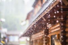 Ulewa w lato deszczu i burzy opuszcza na dachu zdjęcie stock