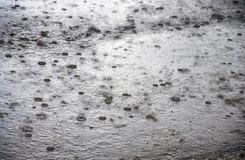 ulewny deszcz Zdjęcie Royalty Free