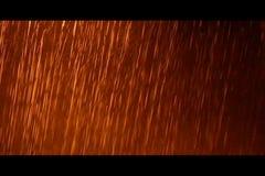 Ulewny deszcz zbiory wideo