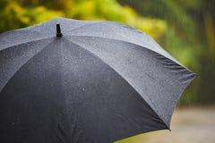 Ulewny deszcz zdjęcia royalty free