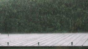 Ulewny Deszcz na burzowym dniu zdjęcie wideo
