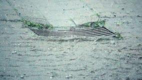 Ulewny Deszcz na burzowym dniu zbiory wideo