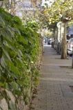 ulica Zdjęcie Royalty Free