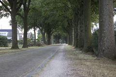 ulica Obraz Royalty Free