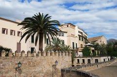 ulica de Mallorca dłonie Zdjęcie Stock