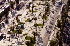 Ulica i palma Zdjęcia Royalty Free