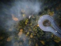 Ulica od above synkliny mglisty las przy jesienią, widok z lotu ptaka lataniem przez chmur z mgłą i drzewami, Obraz Stock