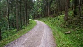 Ulica przez lasu fotografia stock