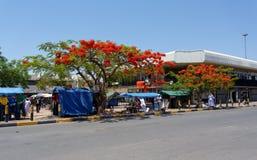 Ulica w Francis miasteczku, Botswana Fotografia Royalty Free