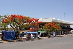 Ulica w Francis miasteczku, Botswana Zdjęcia Stock