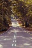 Ulica w lesie obrazy royalty free