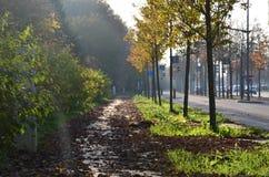 Ulica w Luksemburg Obraz Royalty Free