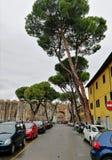 Ulica w Pisa, Włochy zdjęcia royalty free