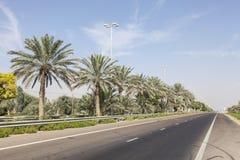 Ulica w pustynnym grodzkim Mezairaa, UAE Obraz Stock