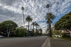 Ulica z drzewkami palmowymi w Beverly Hills, Los Angeles -, Kalifornia, usa Zdjęcia Royalty Free