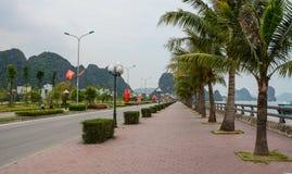 Ulica z drzewkami palmowymi w Wietnam Fotografia Stock