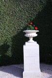 Ulicy kamienna waza na kamiennym piedestale przeciw żyłującym żywopłotom Zdjęcie Royalty Free
