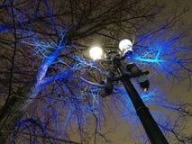 Uliczna drzewna dekoracja z coloured dowodzonymi światłami w centre obrazy royalty free