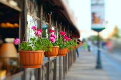 Uliczna kawiarnia Fotografia Royalty Free
