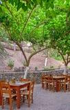Uliczna kawiarnia pod drzewami Zdjęcie Stock