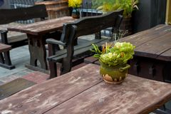Uliczna plenerowa kawiarnia z natury dekoracją Obrazy Stock