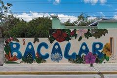 Uliczna sztuka na domowej ścianie w centrum bacalar, quintana roo, Mexico Zdjęcie Stock