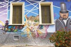 Uliczna sztuka Valparaiso Fotografia Stock