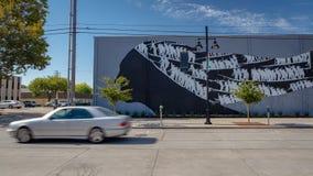 Uliczna sztuka w Sacramento, Kalifornia zdjęcia royalty free