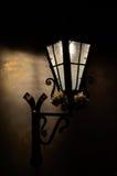 Uliczni nocy światła Fotografia Stock